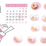 Исчисление срока беременности на основании разных параметров