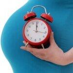 Срок беременности и изменения в организме будущей матери